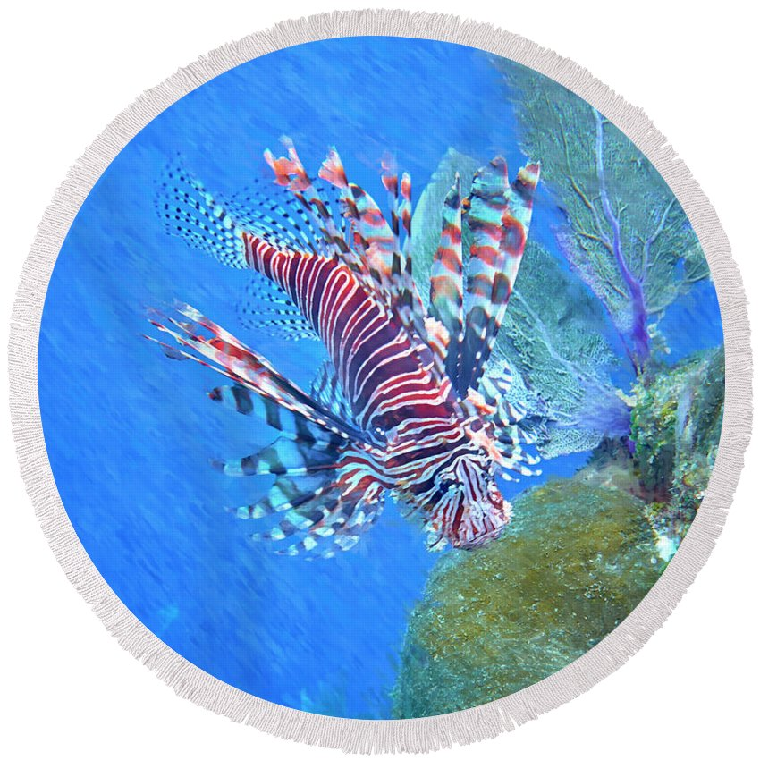 Lion Fish Round Beach Towel featuring the photograph Lion Fish by Robert Stein