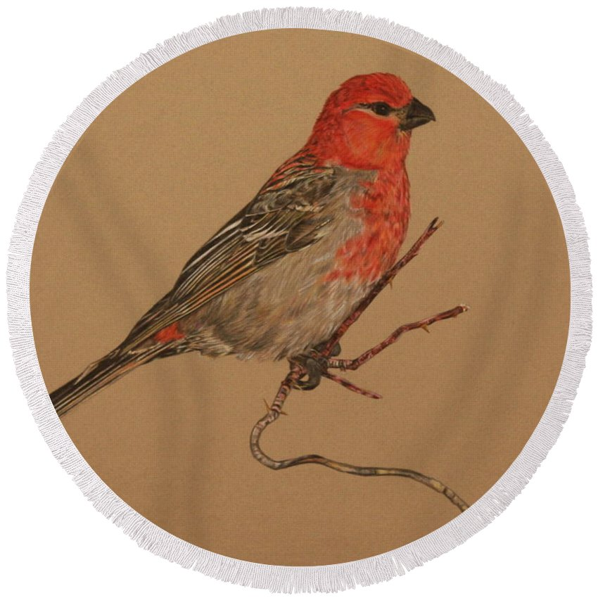 Bird Round Beach Towel featuring the drawing Little Bird by Michelle Miron-Rebbe