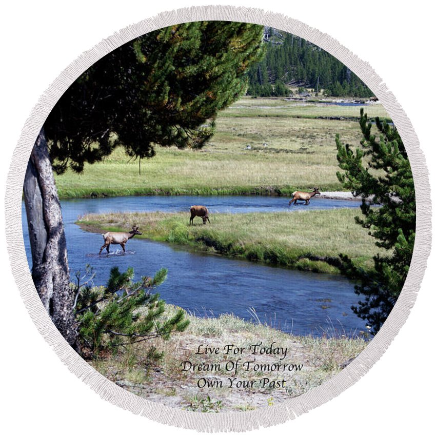 Yellowstone Park Elk Herd Round Beach Towel featuring the photograph Live Dream Own Yellowstone Park Elk Herd Text by Thomas Woolworth