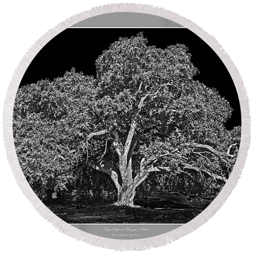 Trees Round Beach Towel featuring the photograph Live Oak At Hogan's Hole- Lion's Golf Course by Jim Smith