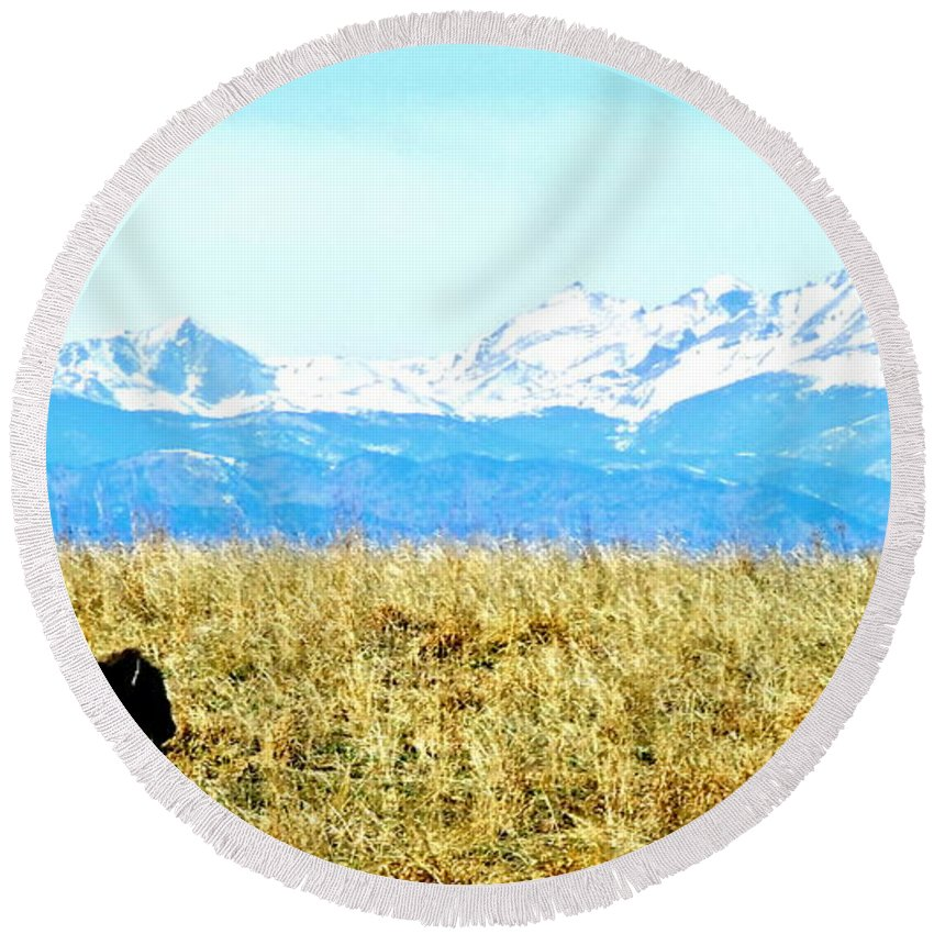 Buffalo Round Beach Towel featuring the photograph Lone Buffalo Watching The Rocky Mountains by Amy McDaniel
