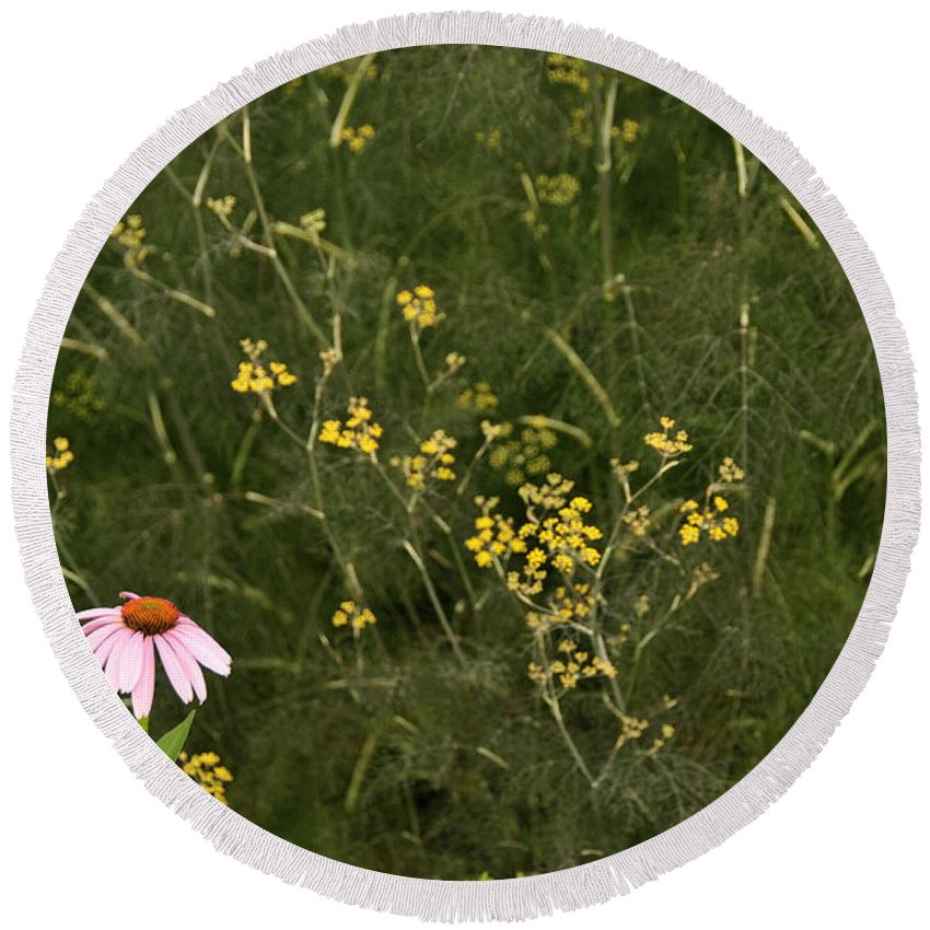 Flower Round Beach Towel featuring the photograph Lone Cone by David Arment