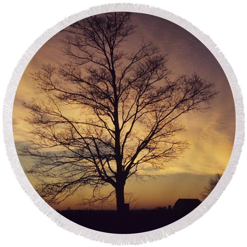 Lone Tree Round Beach Towel featuring the photograph Lone Tree At Sunrise by John Harmon