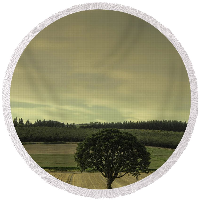 Tree Round Beach Towel featuring the photograph Lone Tree In The Field by Don Schwartz