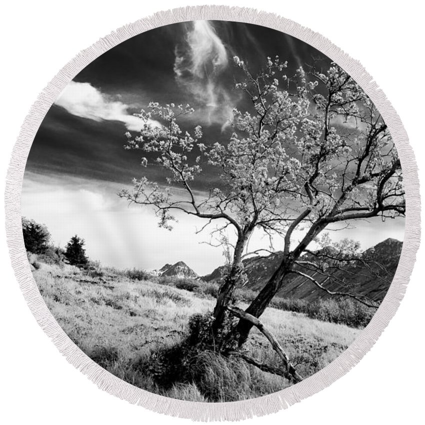 Tree Round Beach Towel featuring the photograph Lone Tree by Tim Newton