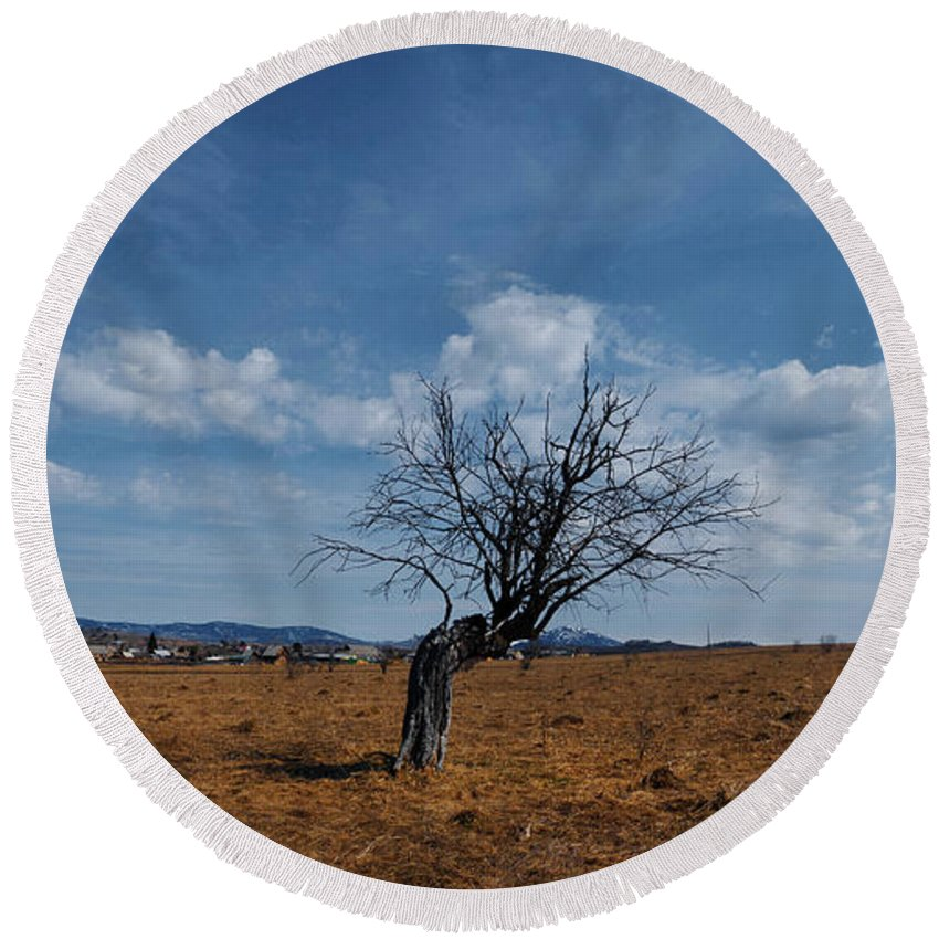 Spring Round Beach Towel featuring the photograph Lonely Dry Tree In A Field by Sergey Giviryak