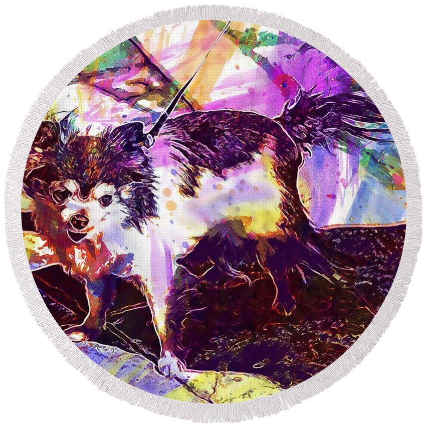 Long Round Beach Towel featuring the digital art Long Haired Chihuahua Dog Pet by PixBreak Art