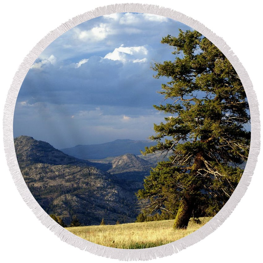 Yellowstone National Park Round Beach Towel featuring the photograph Lonly Tree by Marty Koch