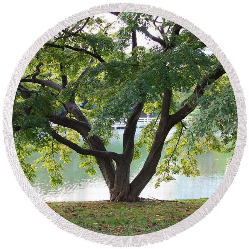 Tokyo Park Round Beach Towel featuring the photograph Lovely Tokyo Tree With Pond by Carol Groenen