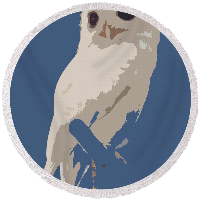 Owl Round Beach Towel featuring the photograph Luna The Rescued White Leucistic Eastern Screech Owl Abstracted by Barbie Corbett-Newmin