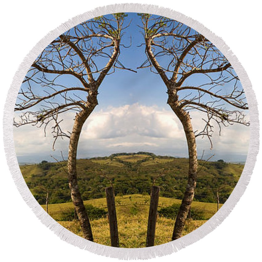 Trees Round Beach Towel featuring the photograph Lush Land Leafless Trees IIi by Madeline Ellis
