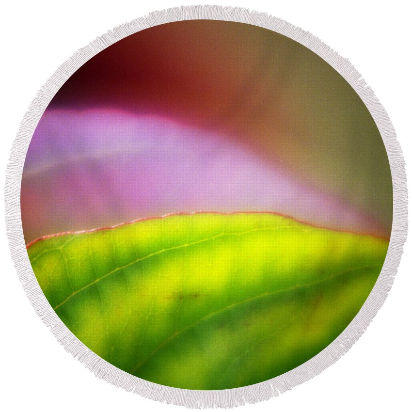 Macro Round Beach Towel featuring the photograph Macro Leaf by Lee Santa