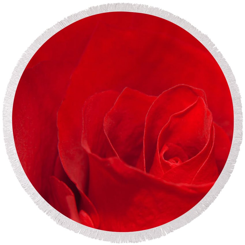 Rose Round Beach Towel featuring the photograph Macro Red Rose by Svetlana Sewell
