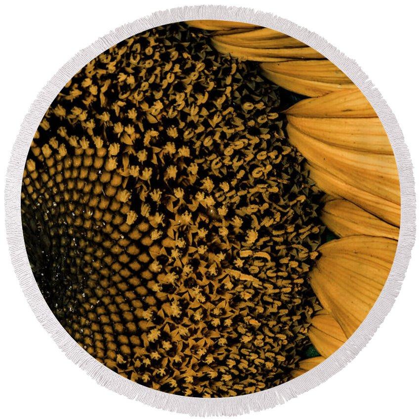 Sunflower Round Beach Towel featuring the photograph Macro Sunflower by Cindy Gatzemeier
