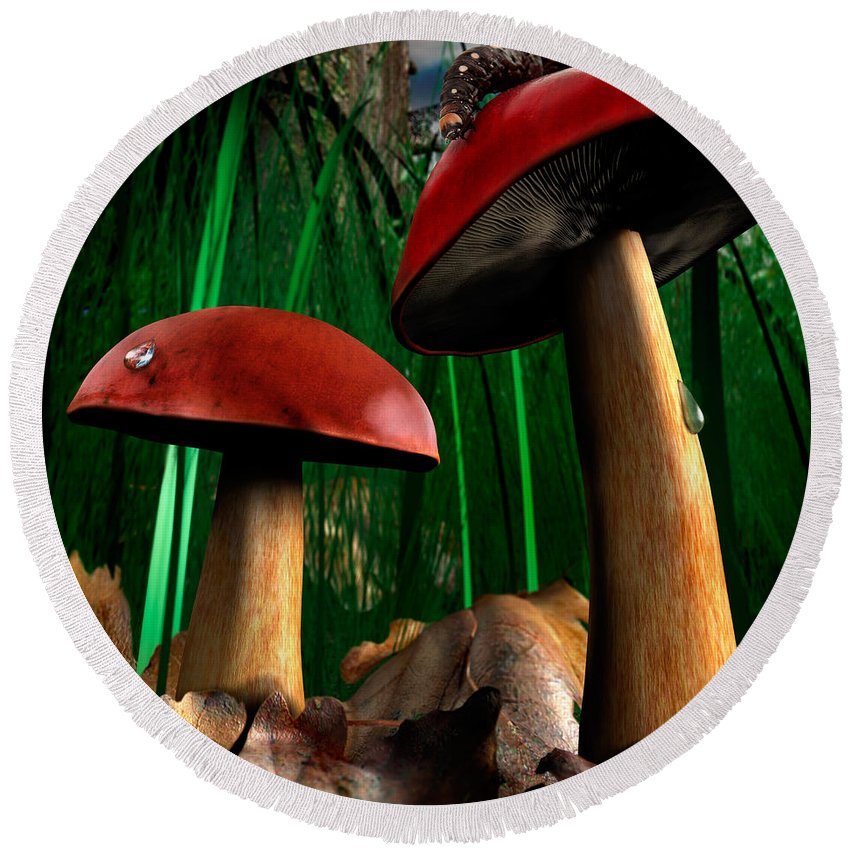 Mushrooms Round Beach Towel featuring the photograph Magical Forest by Maxim Images Prints