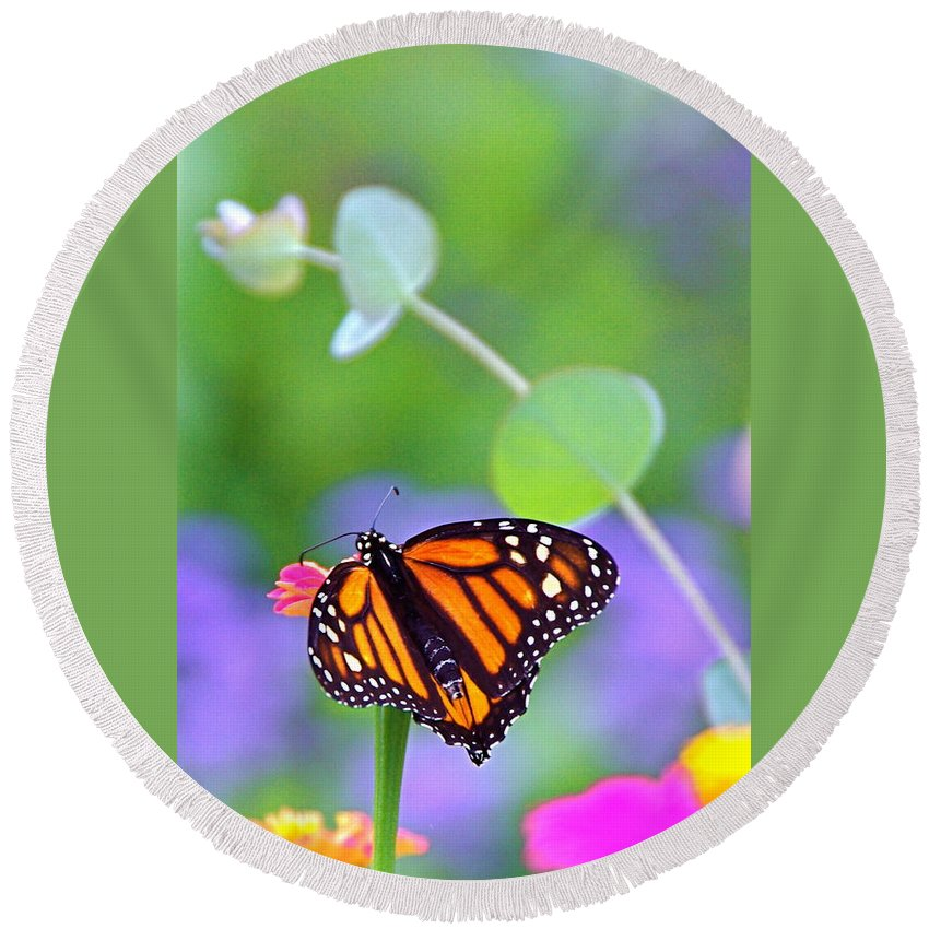 Magical Round Beach Towel featuring the photograph Magical Monarch by Byron Varvarigos