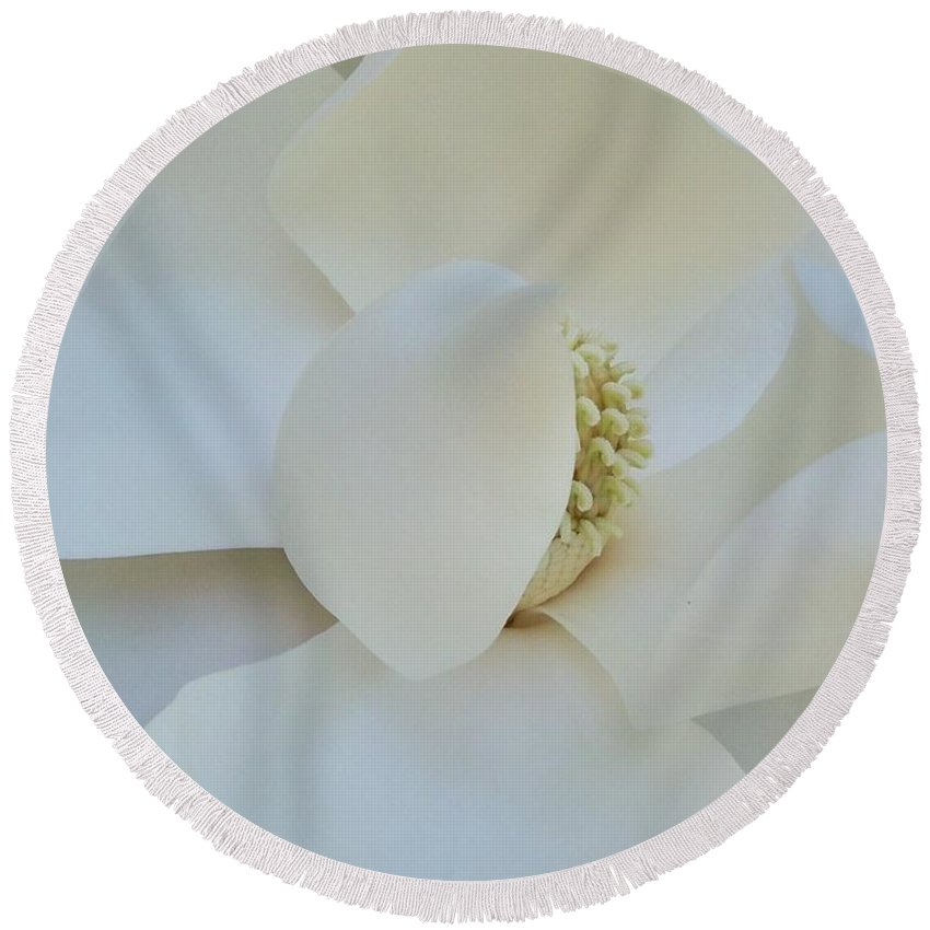 Close-up Round Beach Towel featuring the photograph Magnolia Close Up by Stefani Smirnes