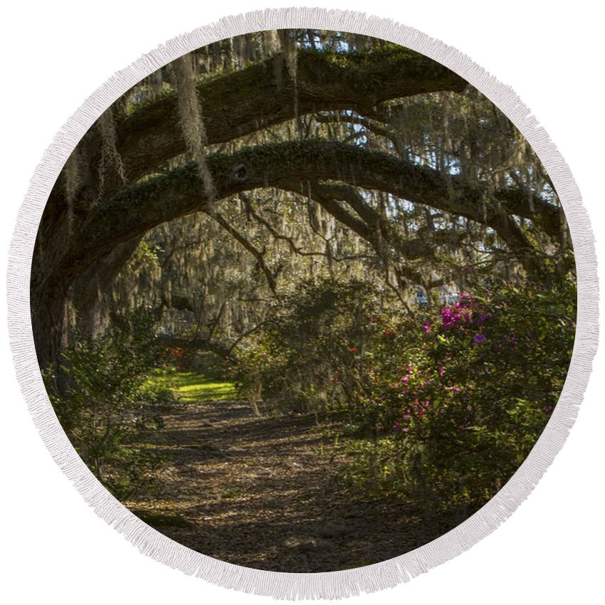Live Oaks Round Beach Towel featuring the photograph Magnolia Plantation by Jeff Shumaker