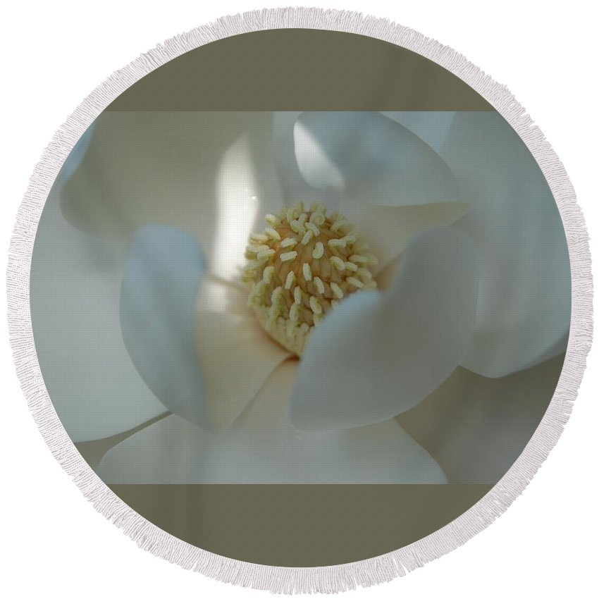 Highlight Round Beach Towel featuring the photograph Magnolia Stamen Highlight by Stefani Smirnes