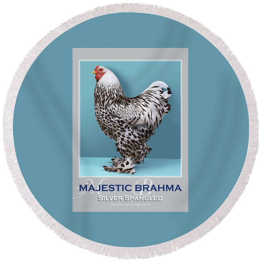 Poultry Round Beach Towel featuring the digital art Majestic Brahma Silver Spangled by Sigrid Van Dort