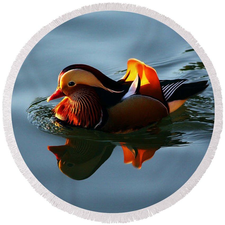 Mandarin Duck Round Beach Towel featuring the photograph Mandarin Duck by Xueling Zou