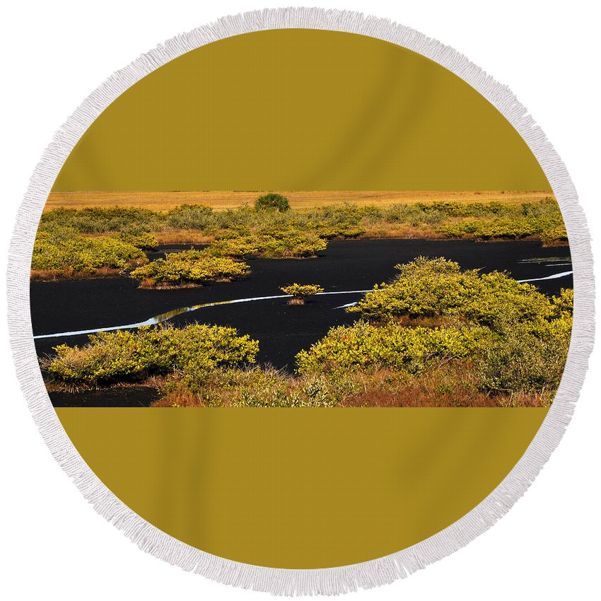 Mangrove River Round Beach Towel featuring the photograph Mangrove River Panoramic by David Lee Thompson