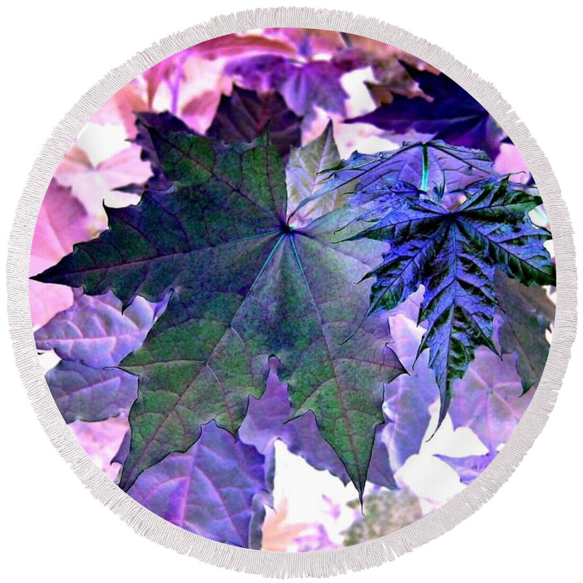 Dramatic Round Beach Towel featuring the photograph Maple Magnetism by Will Borden