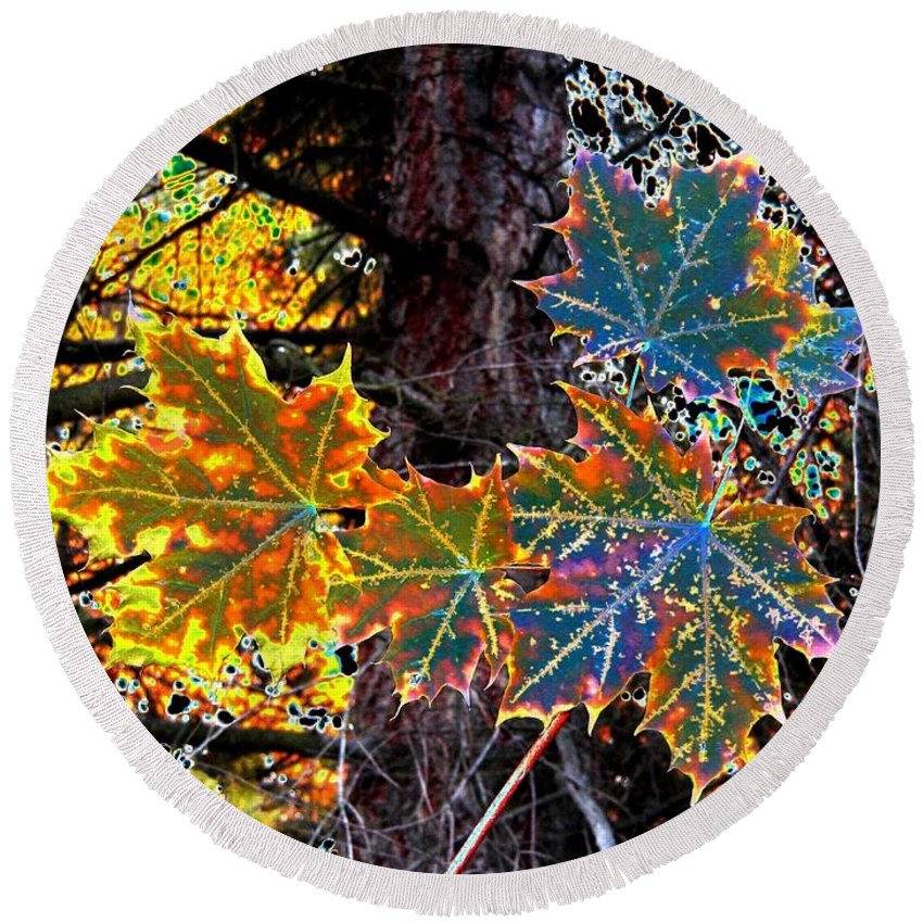 Cheerful Round Beach Towel featuring the digital art Maple Mania 14 by Will Borden