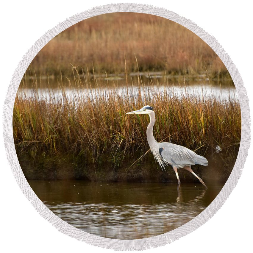 Ann Keisling Round Beach Towel featuring the photograph Marsh Wader by Ann Keisling
