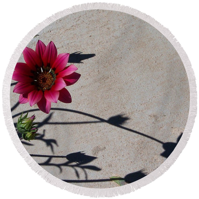 Flowers Round Beach Towel featuring the photograph Me And My Shadow by Kathy McClure