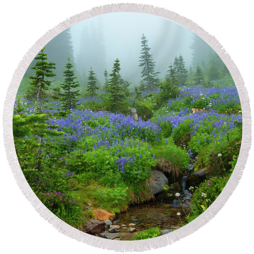 Stream Round Beach Towel featuring the photograph Meadows In The Mist by Mike Dawson