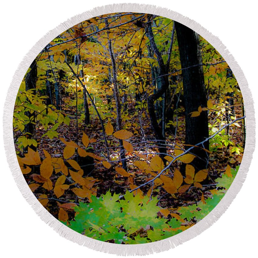 Landscape Round Beach Towel featuring the photograph Michigan Woods by Donna Fonseca Newton