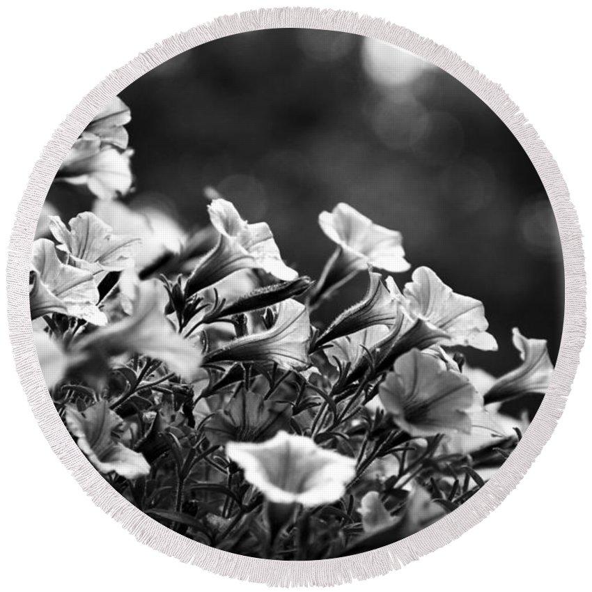 Petunia Round Beach Towel featuring the photograph Mill Hill Inn Petunias Black And White by Marina McLain