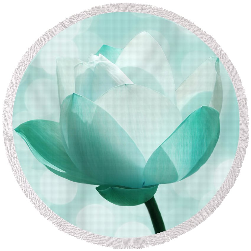 Lotus Round Beach Towel featuring the photograph Mint by Jacky Gerritsen