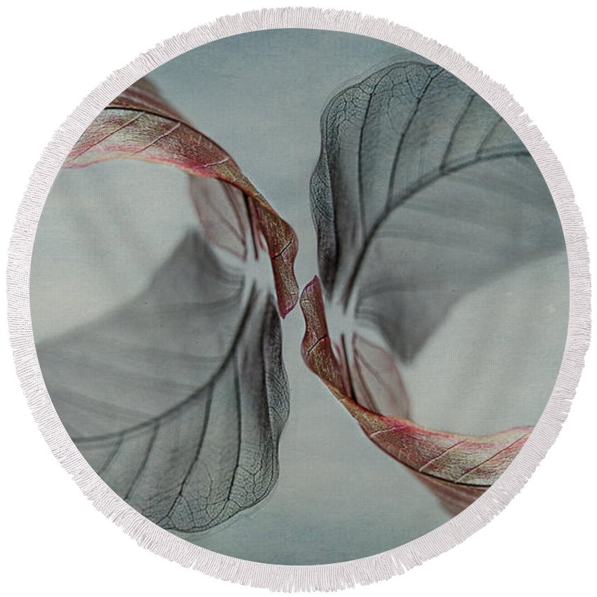 Leaf Round Beach Towel featuring the photograph Mirror Image by Maggie Terlecki