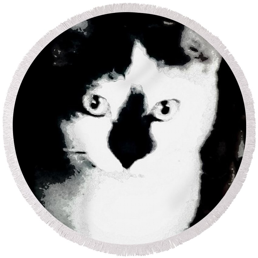 Cat Round Beach Towel featuring the photograph Mischief by Antoinette Greenwalt Grude