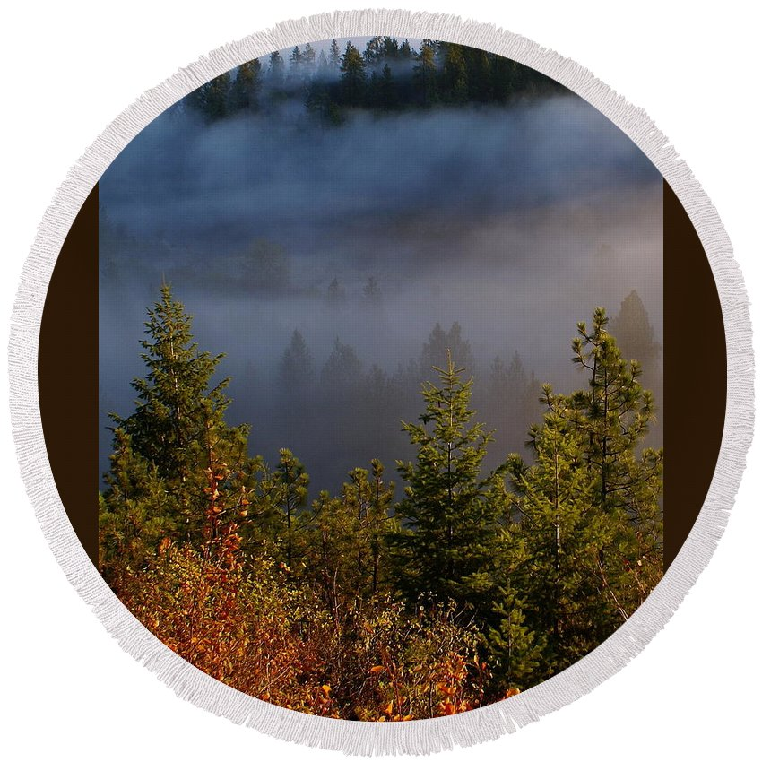 Nature Round Beach Towel featuring the photograph Mist Enshrouded Morning by Ben Upham III