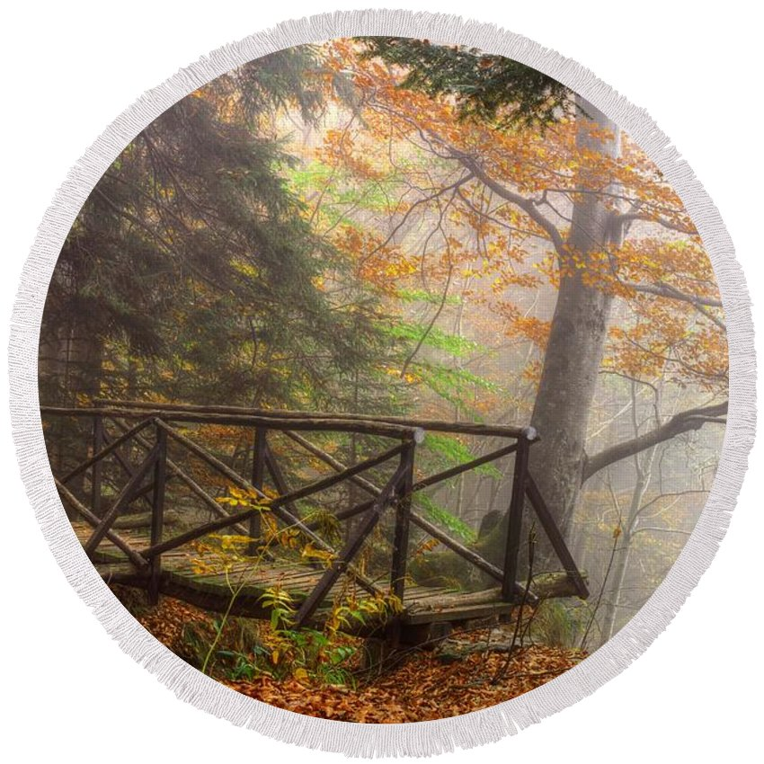 Autumn Round Beach Towel featuring the photograph Misty Forest by Ivan Slosar