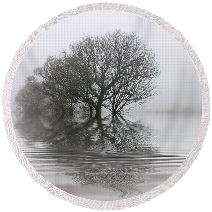 Trees Round Beach Towel featuring the photograph Misty Wetlands by Rob Lester
