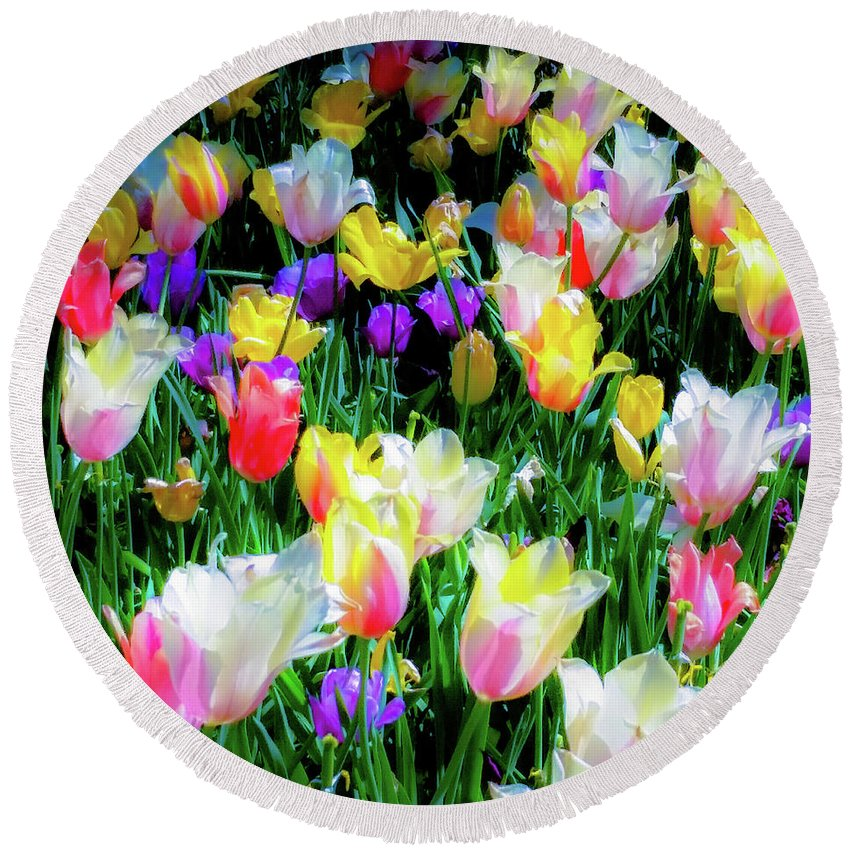 Tulips Round Beach Towel featuring the photograph Mixed Tulips In Bloom by D Davila