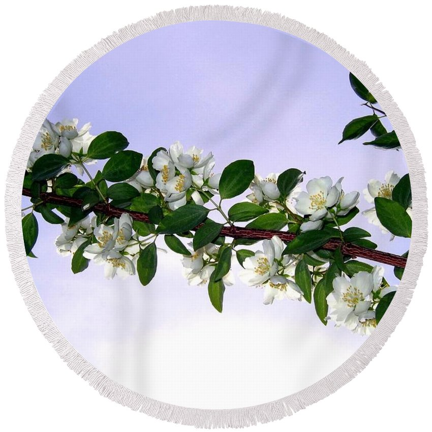 Mock Orange Round Beach Towel featuring the photograph Mock Orange by Will Borden