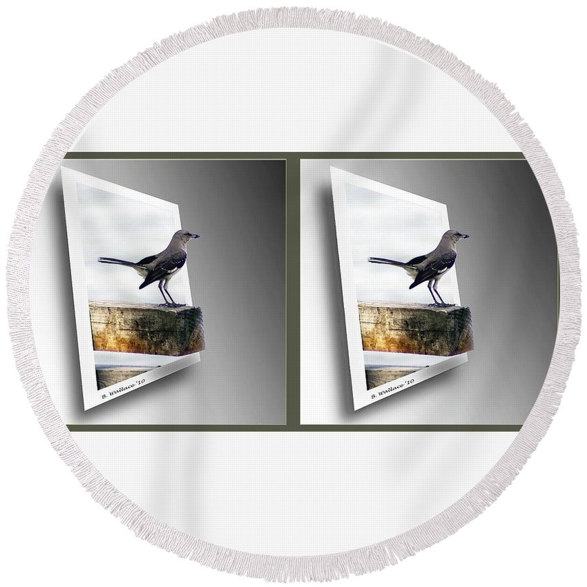 3d Round Beach Towel featuring the photograph Mockingbird - Gently Cross Your Eyes And Focus On The Middle Image by Brian Wallace