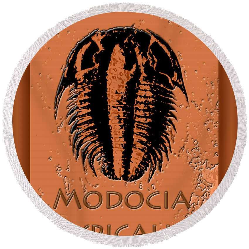 Trilobite Fossil Ancient Colorful Exotic Paleontology Marine Prehistoric Unique Cool Awesome Round Beach Towel featuring the photograph Modocia Typicalis Fossil Trilobite by Melissa A Benson