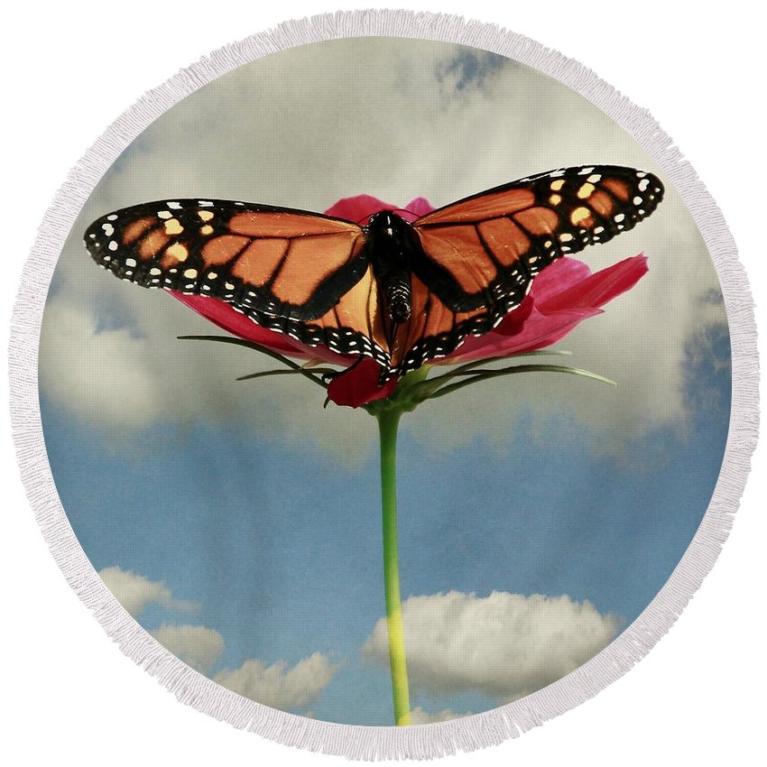 Monarch Round Beach Towel featuring the photograph Monarch Butterfly by Chris Berry