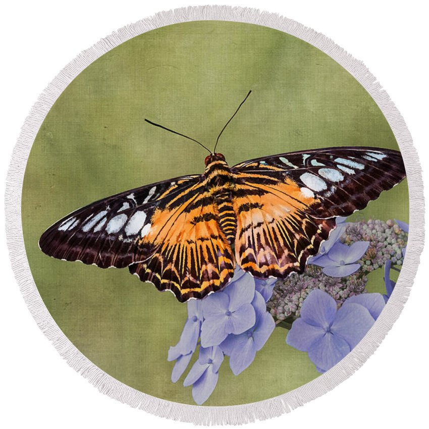 Butterfly Round Beach Towel featuring the photograph Clipper Butterfly by Patti Deters