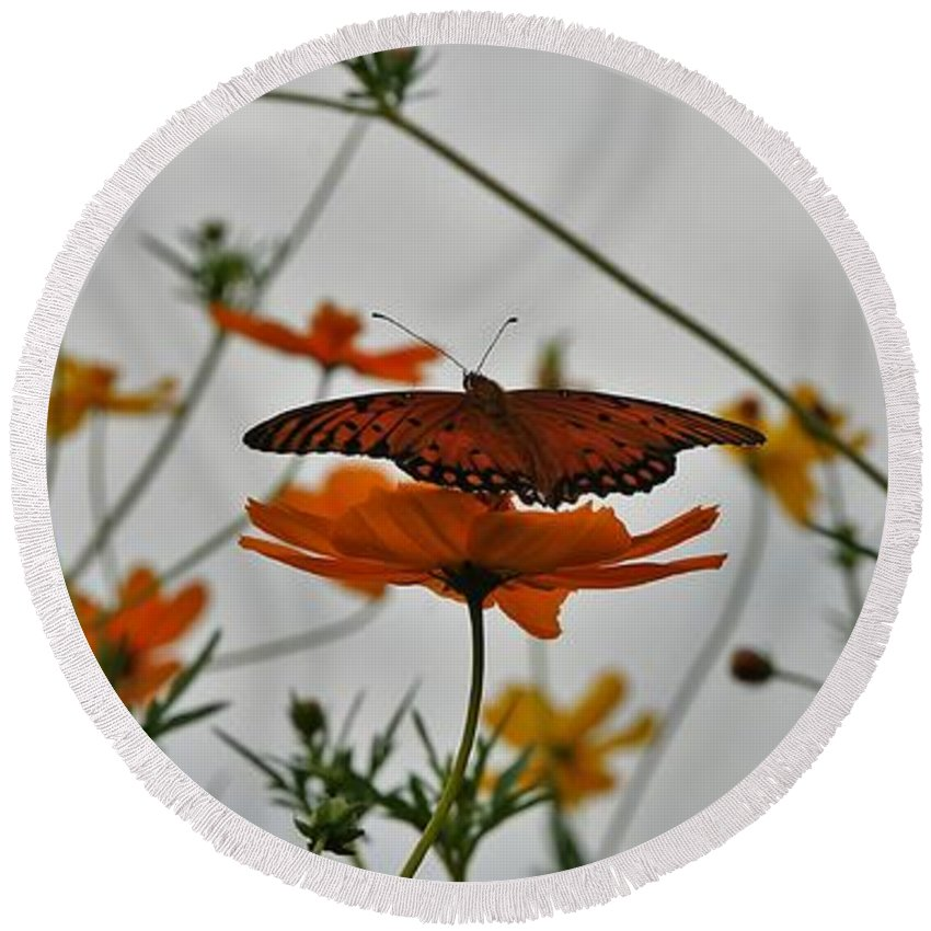 Monarch Butterflies Round Beach Towel featuring the photograph Monarch on the River by Leon Hollins III