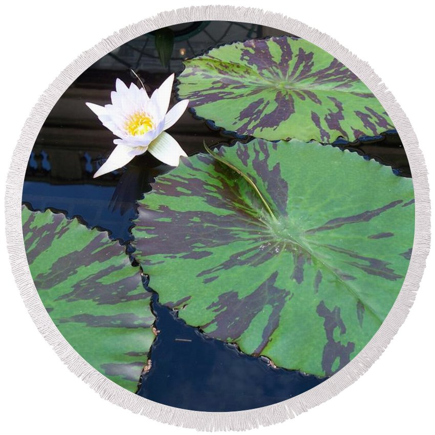 Photograph Round Beach Towel featuring the photograph Monet Lilies White by Eric Schiabor
