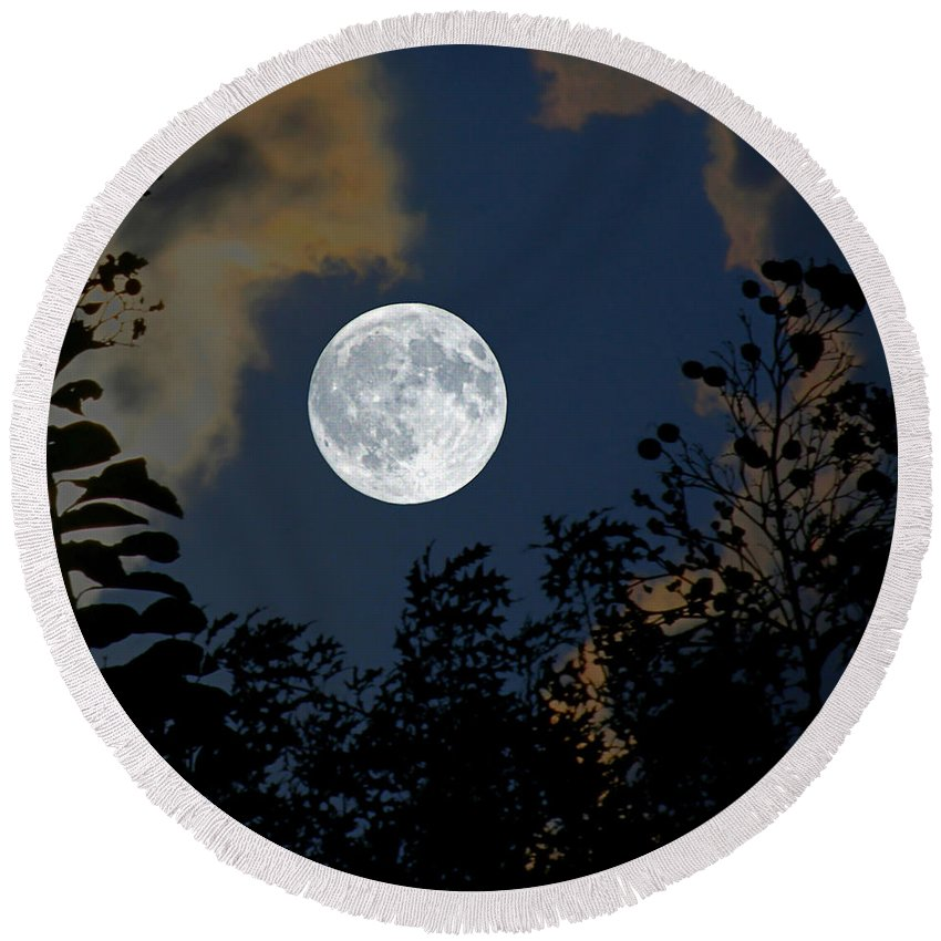 Branches Round Beach Towel featuring the photograph Moon Glo by Trish Mistric