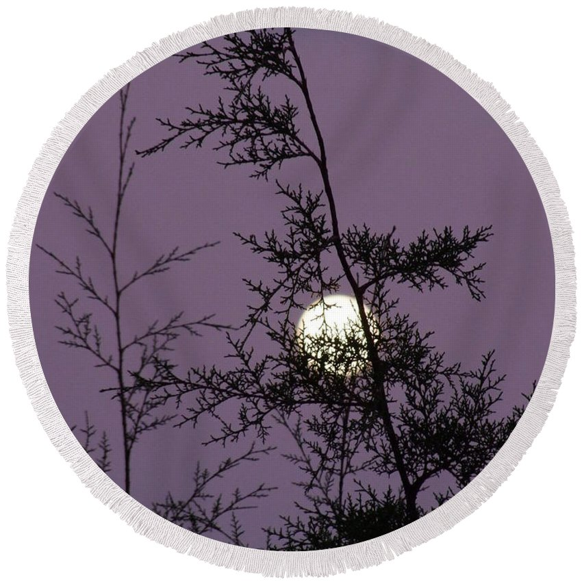 Mary Deal Round Beach Towel featuring the photograph Moon Trees by Mary Deal