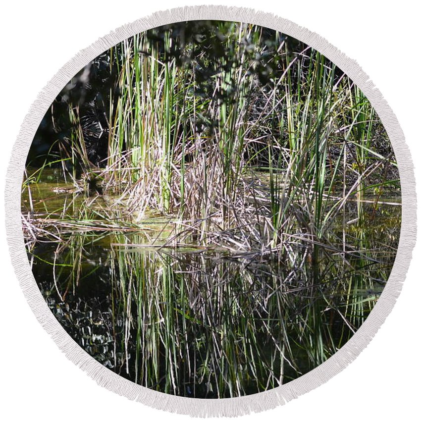 Florida Everglades National Park Round Beach Towel featuring the photograph More Marsh by Tammy Mutka